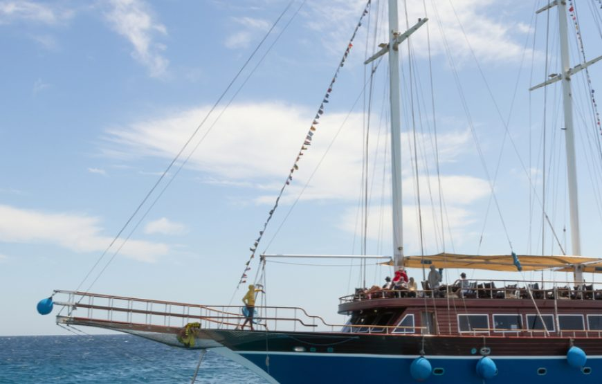 The 12 Best Hurghada Pirates Boat Accounts to Follow on Twitter